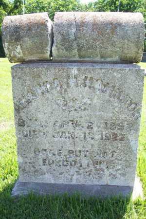 HAMILTON, AMANDA M. - Benton County, Arkansas | AMANDA M. HAMILTON - Arkansas Gravestone Photos