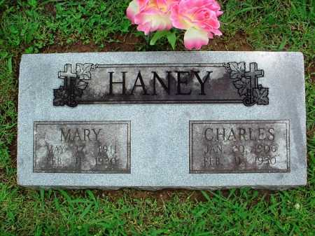HANEY, CHARLES - Benton County, Arkansas | CHARLES HANEY - Arkansas Gravestone Photos