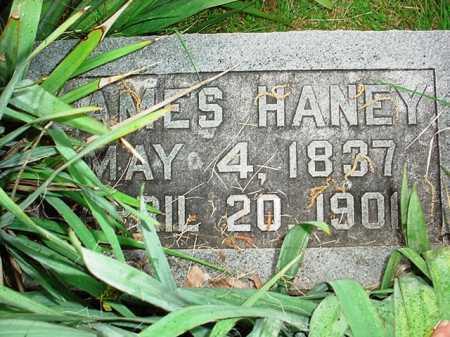 HANEY, JAMES - Benton County, Arkansas   JAMES HANEY - Arkansas Gravestone Photos