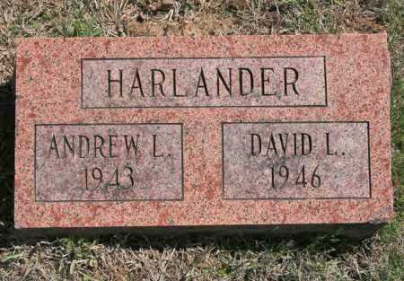 HARLANDER, DAVID L - Benton County, Arkansas | DAVID L HARLANDER - Arkansas Gravestone Photos