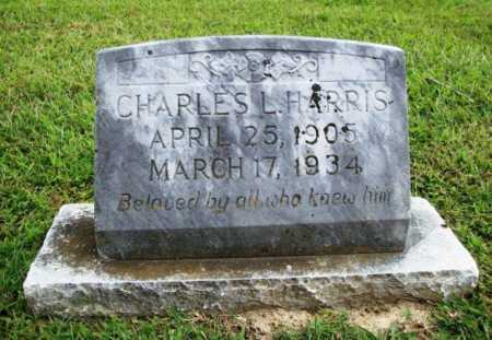 HARRIS (VETERAN), CHARLES L - Benton County, Arkansas | CHARLES L HARRIS (VETERAN) - Arkansas Gravestone Photos