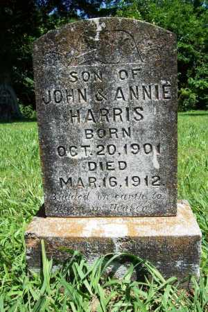 HARRIS, WILLIE - Benton County, Arkansas | WILLIE HARRIS - Arkansas Gravestone Photos