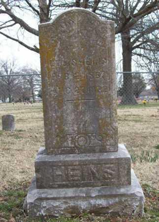 HEINS, LOUIS - Benton County, Arkansas | LOUIS HEINS - Arkansas Gravestone Photos