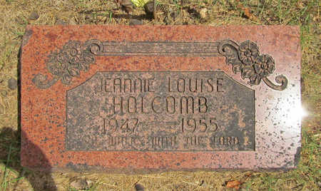 HOLCOMB, JEANNIE LOUISE - Benton County, Arkansas | JEANNIE LOUISE HOLCOMB - Arkansas Gravestone Photos