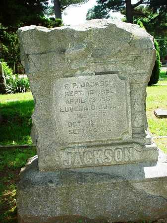 BUNCH JACKSON, LUVENA O. - Benton County, Arkansas | LUVENA O. BUNCH JACKSON - Arkansas Gravestone Photos