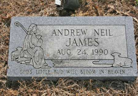 JAMES, ANDREW NEIL - Benton County, Arkansas | ANDREW NEIL JAMES - Arkansas Gravestone Photos