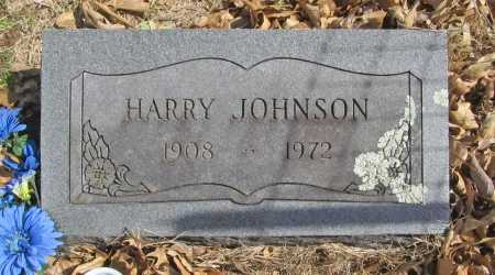 JOHNSON, HARRY - Benton County, Arkansas | HARRY JOHNSON - Arkansas Gravestone Photos