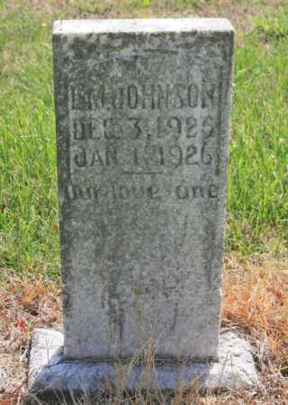 JOHNSON, L. M. - Benton County, Arkansas | L. M. JOHNSON - Arkansas Gravestone Photos