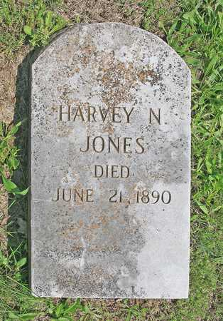 JONES, HARVEY N - Benton County, Arkansas | HARVEY N JONES - Arkansas Gravestone Photos