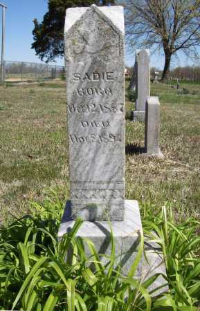 JONES, SADIE - Benton County, Arkansas | SADIE JONES - Arkansas Gravestone Photos