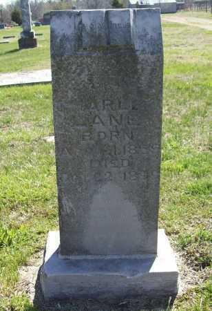 LANE, CHARLES - Benton County, Arkansas | CHARLES LANE - Arkansas Gravestone Photos