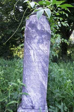LANGLEY, MARTHA EMELINE - Benton County, Arkansas | MARTHA EMELINE LANGLEY - Arkansas Gravestone Photos