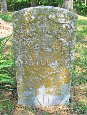 LEACH (VETERAN UNION), HENRY C - Benton County, Arkansas | HENRY C LEACH (VETERAN UNION) - Arkansas Gravestone Photos