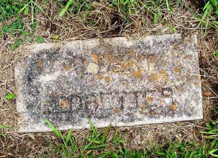 LEDBETTER, ALBERT - Benton County, Arkansas | ALBERT LEDBETTER - Arkansas Gravestone Photos