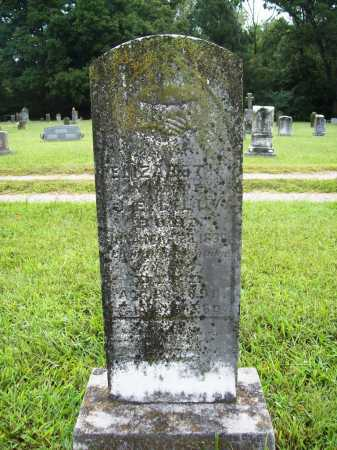 LILLY, ELIZABETH - Benton County, Arkansas | ELIZABETH LILLY - Arkansas Gravestone Photos