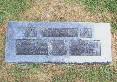 LYNCH, HARRY - Benton County, Arkansas | HARRY LYNCH - Arkansas Gravestone Photos