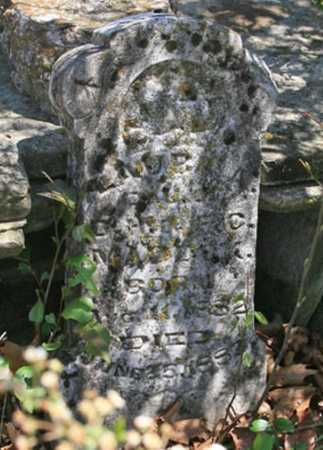 MADDOX, LAURA A. - Benton County, Arkansas | LAURA A. MADDOX - Arkansas Gravestone Photos