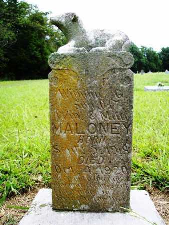MALONEY, WILLIAM G. - Benton County, Arkansas | WILLIAM G. MALONEY - Arkansas Gravestone Photos