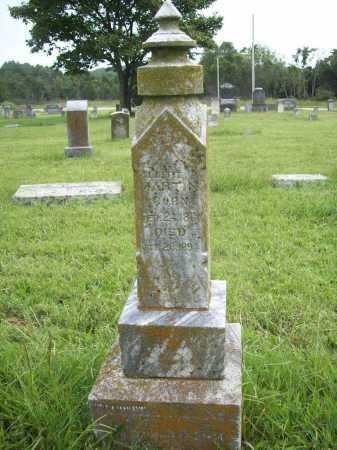 MARTIN, ALBERT P. - Benton County, Arkansas | ALBERT P. MARTIN - Arkansas Gravestone Photos