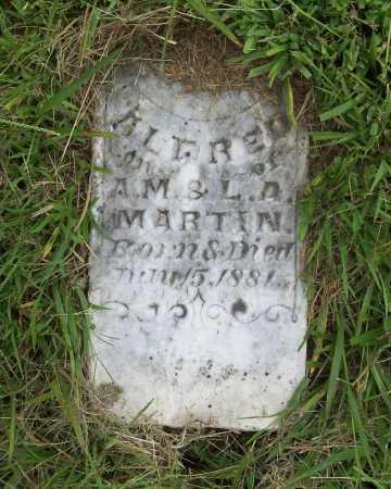 MARTIN, ALFRED - Benton County, Arkansas | ALFRED MARTIN - Arkansas Gravestone Photos