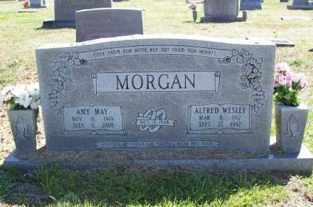 MCKINLEY MORGAN, AMY MAY - Benton County, Arkansas | AMY MAY MCKINLEY MORGAN - Arkansas Gravestone Photos