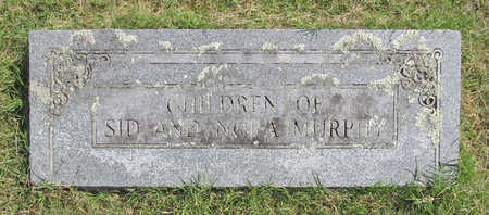 MURPHY, CHILDREN - Benton County, Arkansas | CHILDREN MURPHY - Arkansas Gravestone Photos
