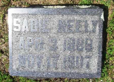 NEELY, SADIE - Benton County, Arkansas | SADIE NEELY - Arkansas Gravestone Photos