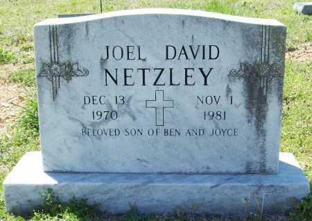 NETZLEY, JOEL DAVID - Benton County, Arkansas | JOEL DAVID NETZLEY - Arkansas Gravestone Photos