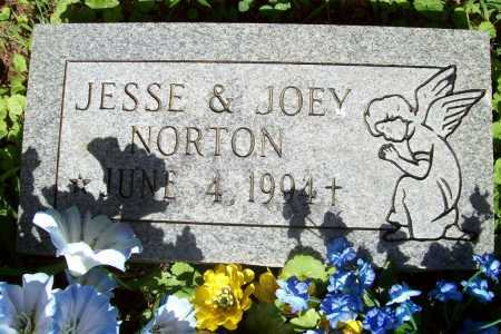 NORTON, JOEY - Benton County, Arkansas | JOEY NORTON - Arkansas Gravestone Photos