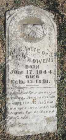 OWENS, M.C. - Benton County, Arkansas | M.C. OWENS - Arkansas Gravestone Photos
