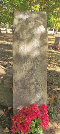 PACE, CAROLINE - Benton County, Arkansas | CAROLINE PACE - Arkansas Gravestone Photos