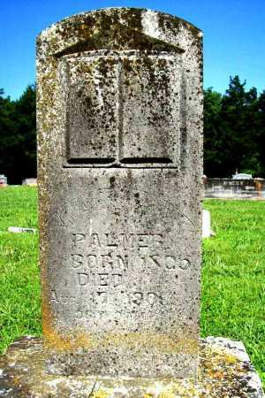 PALMER, MARY A. - Benton County, Arkansas | MARY A. PALMER - Arkansas Gravestone Photos