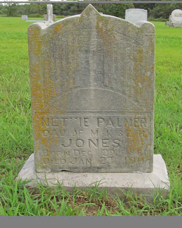 JONES PALMER, NETTIE - Benton County, Arkansas | NETTIE JONES PALMER - Arkansas Gravestone Photos
