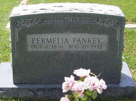 PANKEY, PERMELIA - Benton County, Arkansas | PERMELIA PANKEY - Arkansas Gravestone Photos
