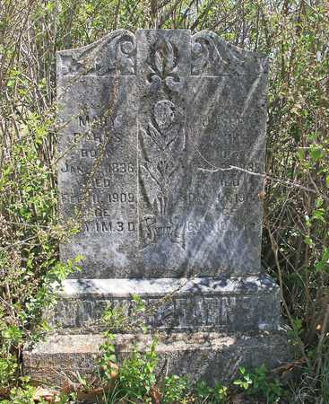 PARKS, MARY - Benton County, Arkansas | MARY PARKS - Arkansas Gravestone Photos