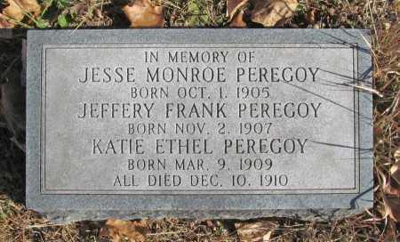 PEREGOY, JEFFERY FRANK - Benton County, Arkansas | JEFFERY FRANK PEREGOY - Arkansas Gravestone Photos