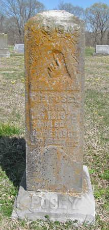 POSEY, D E - Benton County, Arkansas | D E POSEY - Arkansas Gravestone Photos