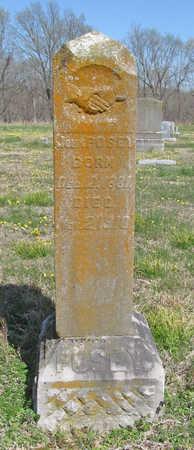 POSEY, JOHN - Benton County, Arkansas | JOHN POSEY - Arkansas Gravestone Photos