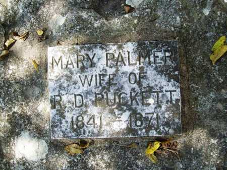 PALMER PUCKETT, MARY - Benton County, Arkansas | MARY PALMER PUCKETT - Arkansas Gravestone Photos