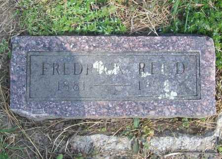 REED, FREDRICK - Benton County, Arkansas | FREDRICK REED - Arkansas Gravestone Photos
