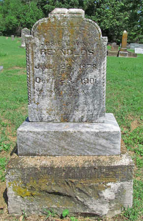 REYNOLDS, JOSIE LUVINA - Benton County, Arkansas | JOSIE LUVINA REYNOLDS - Arkansas Gravestone Photos