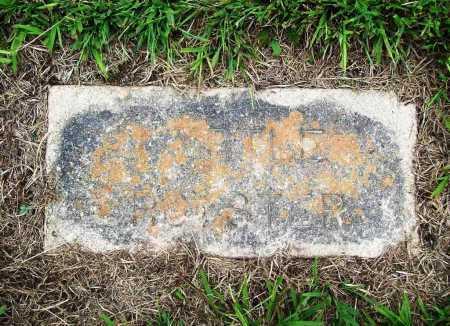 ROYSTER, MYRTLE - Benton County, Arkansas | MYRTLE ROYSTER - Arkansas Gravestone Photos