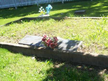 SCHAUM FAMILY PLOT,  - Benton County, Arkansas |  SCHAUM FAMILY PLOT - Arkansas Gravestone Photos