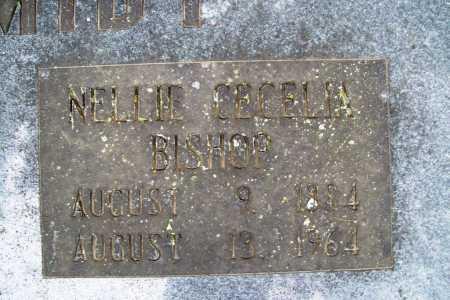 SCHMIDT, NELLIE CECELIA - Benton County, Arkansas | NELLIE CECELIA SCHMIDT - Arkansas Gravestone Photos