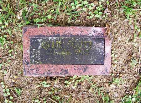 SCOTT, OLLIE - Benton County, Arkansas | OLLIE SCOTT - Arkansas Gravestone Photos