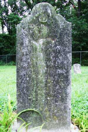 SEILER, ALMIRA ANN - Benton County, Arkansas | ALMIRA ANN SEILER - Arkansas Gravestone Photos