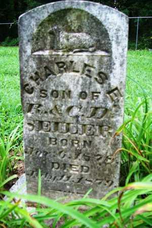 SEILER, CHARLES E. - Benton County, Arkansas | CHARLES E. SEILER - Arkansas Gravestone Photos