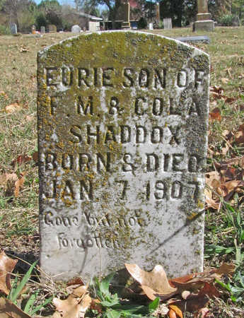 SHADDOX, EURIE - Benton County, Arkansas | EURIE SHADDOX - Arkansas Gravestone Photos