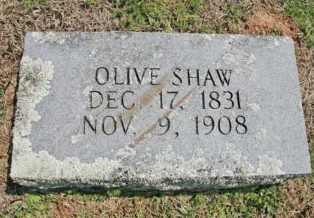 SHAW, OLIVE - Benton County, Arkansas | OLIVE SHAW - Arkansas Gravestone Photos