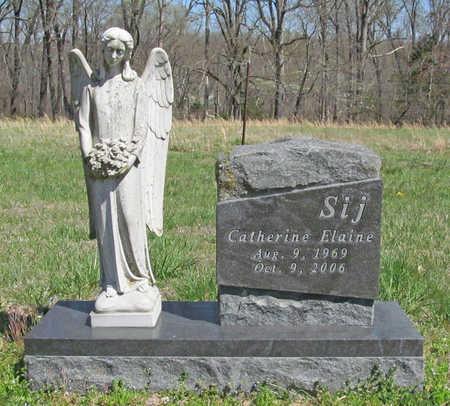 "BOECKMANN SIJ, CATHERINE ELAINE ""CATHY"" - Benton County, Arkansas | CATHERINE ELAINE ""CATHY"" BOECKMANN SIJ - Arkansas Gravestone Photos"